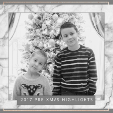 2017 Pre-Christmas Highlights