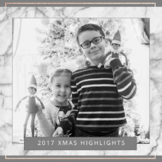 2017 Christmas Highlights